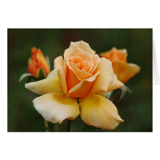 Rosas de oro tarjeta de felicitación