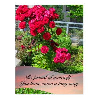 Rosas del patio con la postal de la cita