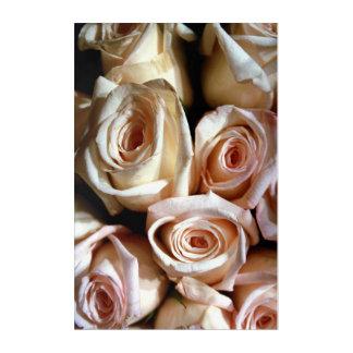Rosas descolorados impresión acrílica