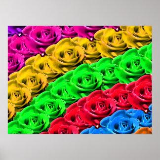 Rosas en un arco iris de colores impresiones
