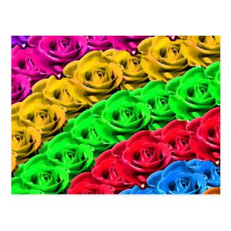 Rosas en un arco iris de colores postal