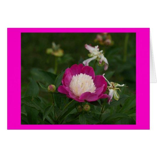 Rosas fuertes y blanco Peony.jpg Tarjeta De Felicitación