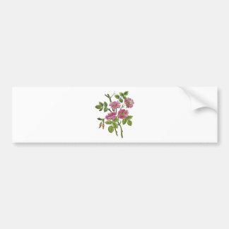 Rosas ingleses viejos rosados bordados etiqueta de parachoque