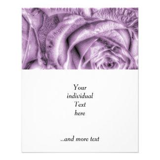 Rosas magníficos, lila suave folleto 11,4 x 14,2 cm