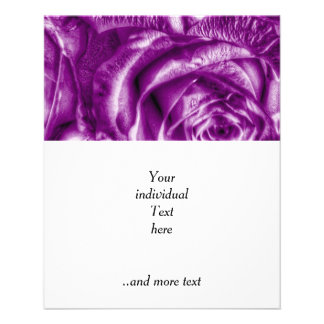 Rosas magníficos, púrpuras folleto 11,4 x 14,2 cm