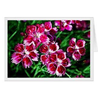 Rosas - poco flores rosadas y blancas rojas tarjeta