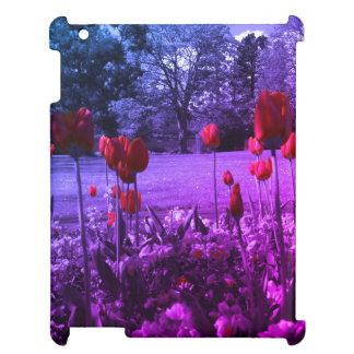rosas rojos en fotografía blanco y negro del