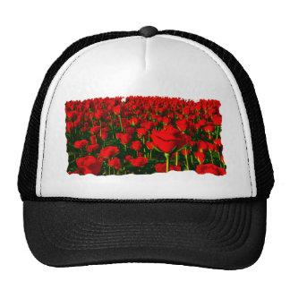 Rosas rojos gorras de camionero