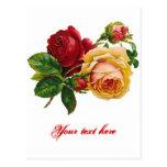 Rosas rojos y amarillos tarjetas postales