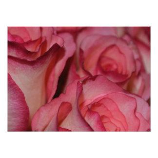 Rosas rosados blancos del borde invitacion personalizada
