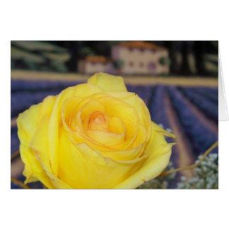 Rosas toscanos tarjeta pequeña