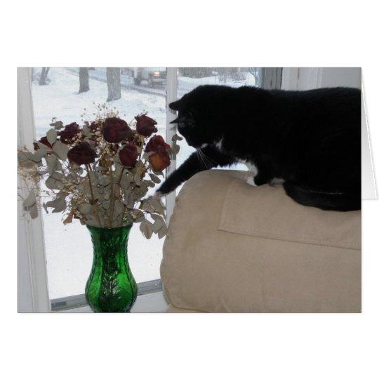 Rosas y el gato tarjeta de felicitación