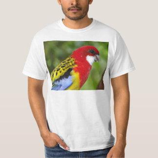 Rosella del este masculino camiseta