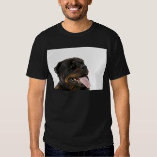 rottweiler grande camisas