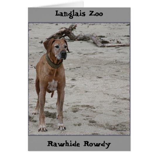 Rowdy, Rowdy del cuero crudo, parque zoológico de Tarjeta Pequeña