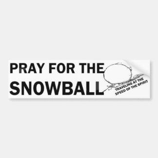 Ruegue para la bola de nieve (LG) Pegatina Para Coche