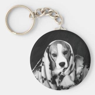 Rupert el llavero del perro de perrito del beagle