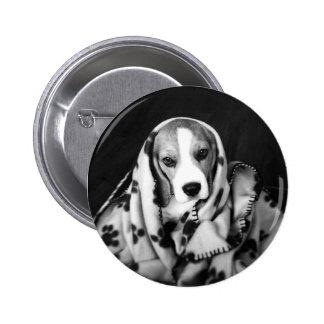 Rupert la insignia del perro de perrito del beagle chapa redonda de 5 cm