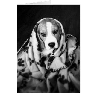 Rupert la tarjeta en blanco del perro de perrito