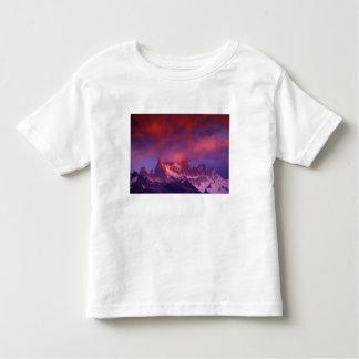 SA, la Argentina, parque nacional del Los Camiseta
