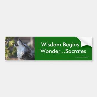 Sabiduría Pegatina Para Coche
