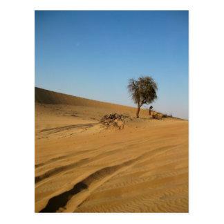 Safari Abu Dhabi del desierto Postal