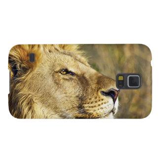 Safari de la fauna del animal salvaje del león funda para galaxy s5