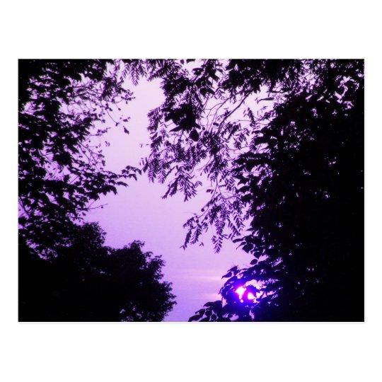 Salida del sol en postal púrpura