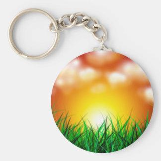 Salida del sol hermosa sobre un campo de la hierba llavero