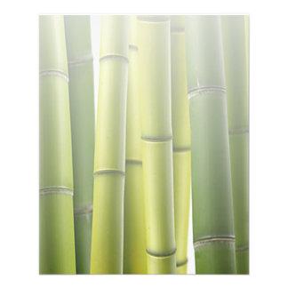 Salón de bambú verde del masaje del cuidado de pie tarjeta publicitaria