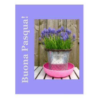 Saludo azul común de pascua de los hyacints - postal