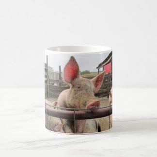 Saludo del cerdo taza de café