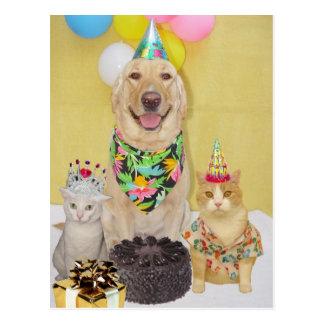 Saludo o invitación adaptable del cumpleaños postal