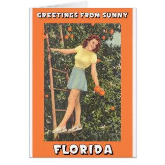 Saludos de la Florida Tarjeta
