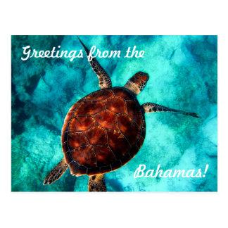 Saludos de la postal de Bahamas