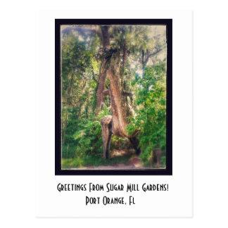 Saludos de la postal de los jardines del molino de