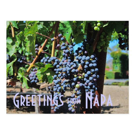 Saludos de Napa Valley California Postal