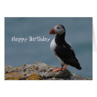 Saludos del cumpleaños del frailecillo tarjeta