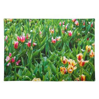 Salvamanteles Campo con los tulipanes rosados y amarillos