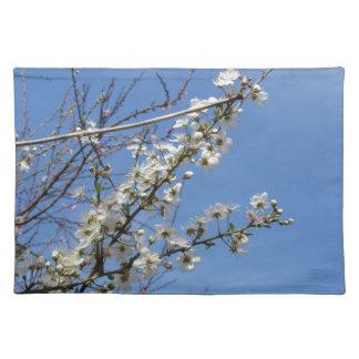 Salvamanteles Ciruelo floreciente contra el cielo. Toscana,
