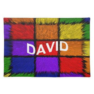 SALVAMANTELES DAVID