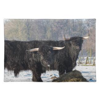 Salvamanteles Dos montañeses escoceses negros en nieve del