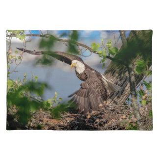 Salvamanteles Eagle calvo que sale de la jerarquía