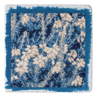 Salvamanteles El brezo blanco florece en un trivet de piedra de