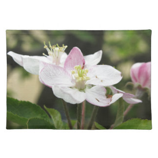 Salvamanteles Flor rosada de la manzana en primavera. Toscana,