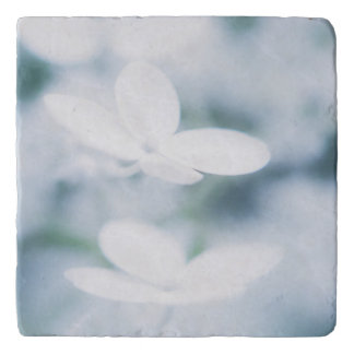 Salvamanteles Flores blancos hermosos