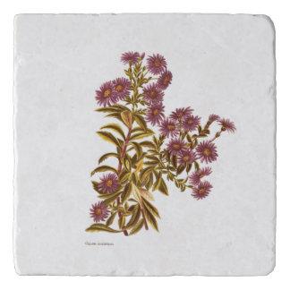 Salvamanteles Flores de la ciencia NZ del vintage - semidentata