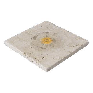 Salvamanteles Foto de la flor blanca