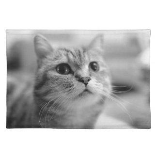 Salvamanteles gato