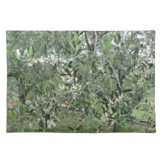 Salvamanteles Las ramas de olivo con primeras florecen Toscana,
